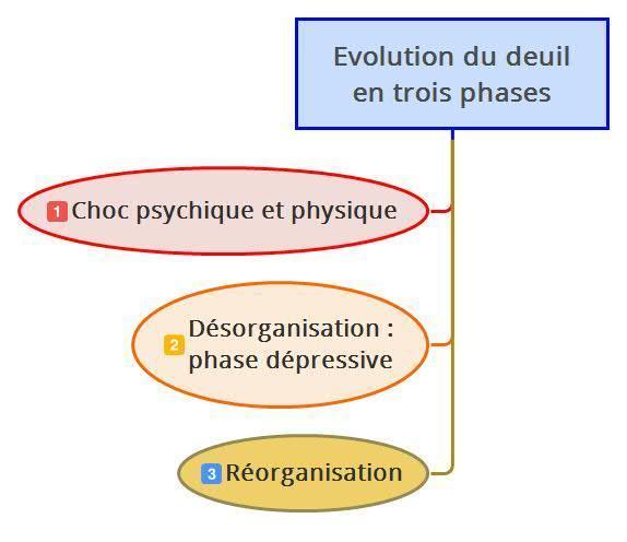Evolution du deuil en 3 phases