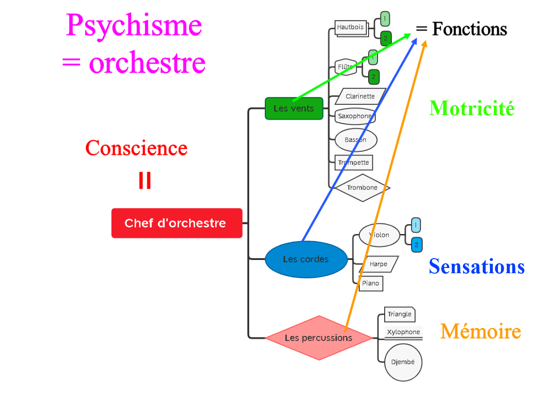 Dissociation : métaphore de l'orchestre symphonique